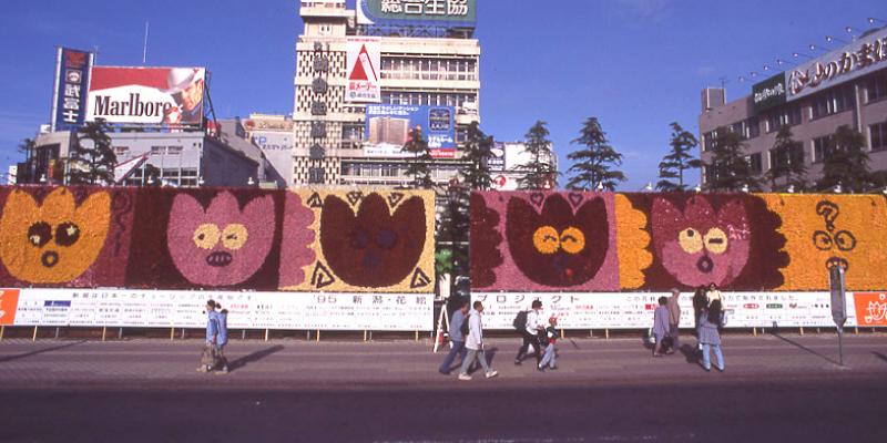 巨大花絵1995