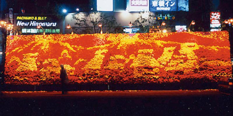 巨大花絵2005