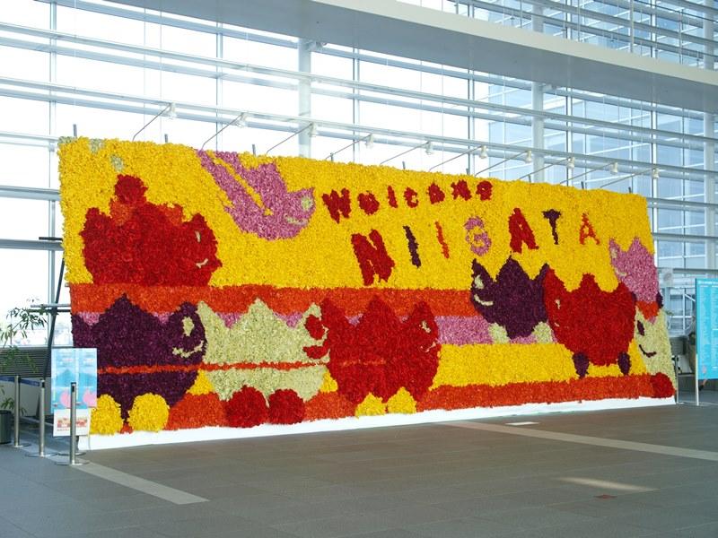 巨大花絵2008